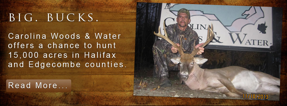 nc deer hunting